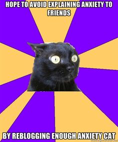 Anxiety Cat Story of my life!!!!!!!