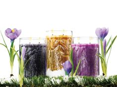 GOLD CANYON CANDLES!!!!!LOOKING TO SPRUCE UP YOUR HOME FOR SPRING?  TRY *PLUMERIA, COAST OR STORM*.......THE IRIDESCENT ILLUMINATION RADIATING FROM THIS WORK OF ART WILL DO THE TRICK. INSPIRED BY THE BEAUTY OF SPRING –THE INTRIGUE LINE WITH THIS SPARKLING PALM WAX, LETSYOU BRING THE CRISP FRAGRANCE AND GLISTEN OF THE SEASON INTO YOUR HOME!!! COME CHECK OUT MY WEBSITE BELOW AND GET YOUR CANDLE ON TODAY!!!!!!!  www.mygc.com/azcandlegirl