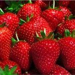 Kitchen Tip: How to Keep Strawberries Fresh…