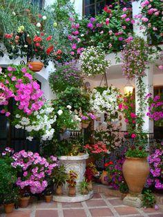 Flowers everywhere.