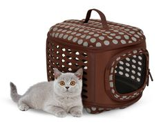 Collapsable pet carrier
