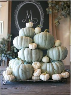 green and white Autumn pumpkins