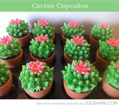 Ouch! Be careful when eating these cupcakes, they are very prickly! idea, sweet, cupcakes, cacti, food, fiesta, cactus cupcak, dessert, parti