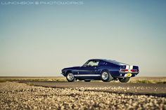 1967 GT500 Shelby Mustang