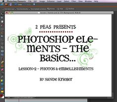 Digital Tutorials :Photoshop Elements - The Basics (Lesson#2) - Designer Garden - Two Peas in a Bucket