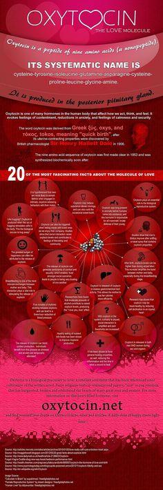 Oxytocin - 20 fascinating facts