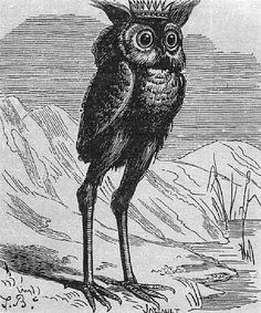 Demons of the Goetia: Stolas is a Great Prince of Hell, commands twenty-six legions of demons, and teaches astronomy and the knowledge of poisonous plants, herbs and precious stones. He is also known as Stolos and Solas. He is depicted as either being a crowned owl with long legs, a raven, or a man.
