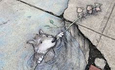 """This artwork is totally awesome and amazing.""""Whether it's a park filled with larger than life animals or even graffiti that makes us think about nature, art has a wonderful way of shaking up our everyday lives. The chalk art done by David Zinn is no exception. """""""
