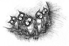 Cool Owls!
