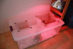 A simple, effective brooder for your spring flock! :: Five Little Homesteaders