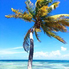 Let the warm Caribbean breeze welcome you to our private Palomino Island.  El Conquistador Resort & Las Casitas Village  Puerto Rico | www.elconresort.com