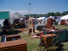 Maine Antiques Festival main antiqu, antiqu festiv