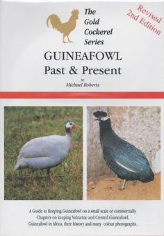 Guinea Fowl Past and Present Book Poultry Hatching Eggs | eBay