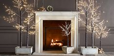 Winter Wonderland Trees from Restoration Hardware - love. . .wish I could find something like this in Nairobi.