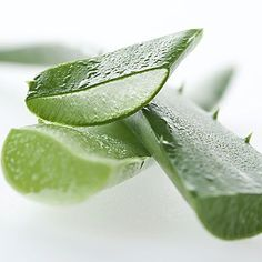 """Aloe, a plant usually used to soothe burns, could do the same thing for stomachs, says Victor Sierpina MD, professor of integrative and family medicine at the University of Texas Medical Branch, in Galveston, and author of The Healthy Gut Workbook.    Aloe vera juice reduces inflammation so """"it quiets down any inflammation that is in the esophagus as well as the stomach,"""" Dr. Sierpina says.    He recommends drinking 1/2 cup before meals, but warns that the juice can be a laxative. Look for bran"""
