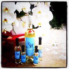 Torrontés for Wedding Season...Especially in 100ml bottles!