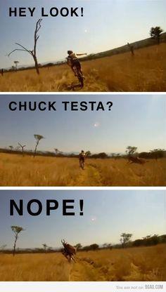 Chuck Testa?