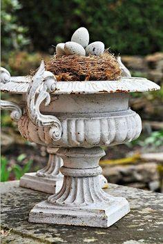 Nest in urn ♥