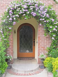 Purple trumpet vine arching over my front door www.mysoulfulhome.com