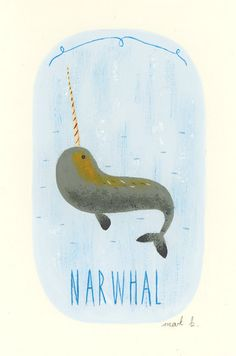 I actually might love narwhals so much