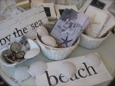 shells and signs and starfish