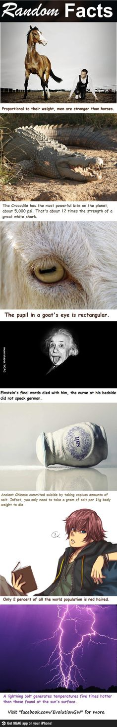 I wonder if the Einstein one is real.