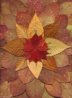 Autumn leaf art flow