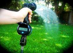 How Often Should You Water Garden Plants
