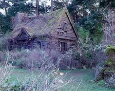 Maria's cabin from the movie Practical Magic.