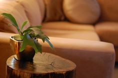 make your own tree stump table