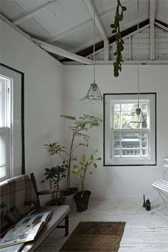 windows with black trim painted around them in an all white room w organic details