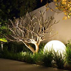 Branksome by Tim Davies Landscaping / Osborne Park, a suburb of Perth, Australia