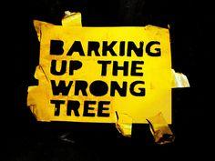 wrong tree, southern style, southern slang, southern thang, southern sayings