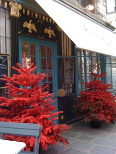 Red flocked christmas trees outside Chez Julien in Paris.