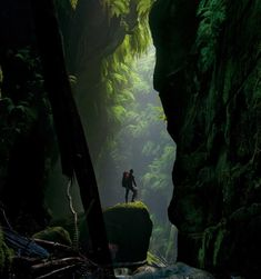 Claustral Canyon - Blue Mountains Australia