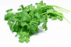 Health Benefits of Coriander or Cilantro for Babies include antimicrobial properties, liver protection, anthelmintic properties, protection from lead and heavy metal toxicity.
