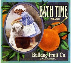 Bath Time brand