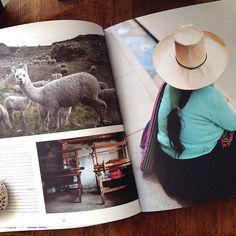 tac magazin