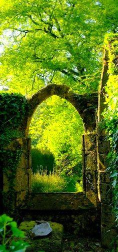long ago, beauti green, secret gardens, window, dream