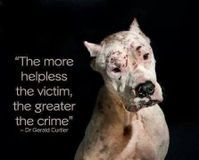 PINNERS!!! PLEASE GET BEHIND THIS PETITION!!!Needs MANY MANY MORE signatures!!! Thank You!!! Pinners ROCK!!!! Demand higher penalties for cruel dog fighting . Even prison sentences.