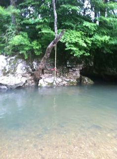 Tennessee is home on pinterest for Swing over water