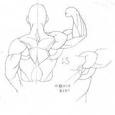 어깨 그리는 방법 어깨의 움직임
