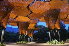 Jardin Botanico | Medellin