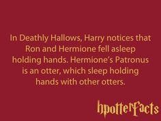 HP FACT