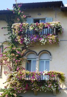 flower covered balconies