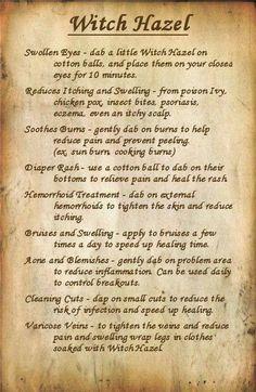 herb, remedi, essential oils, natur, medicine cabinets, beauti, witch hazel, health, skinny fiber