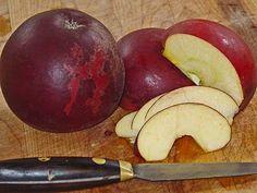 Apple Arkansas Black