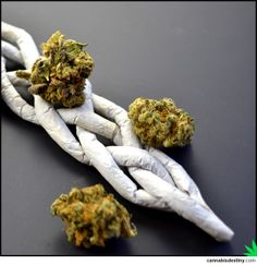 Braided Joint  #braided #joint #marijuana #maryjane #cannabis #weed