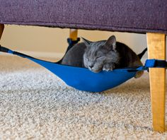 """Cat Crib : A space saving cat hammock your feline will love."""