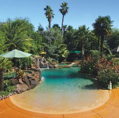 Residential beach entry tropical pool with rock waterfalls and palm trees by Advanced Pools, Rancho Cordova, CA. See company profile and more photos here http://www.luxurypools.com/swimmingpoolbuilder/Advanced-Pools